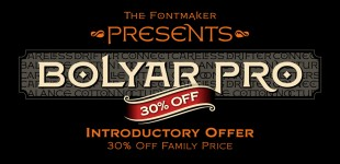 Bolyar Pro font family – Countless options in one font